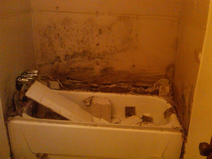 Surface Mold In Bathroom why does my shower smell? | custom home remodeling in gulfport, ms
